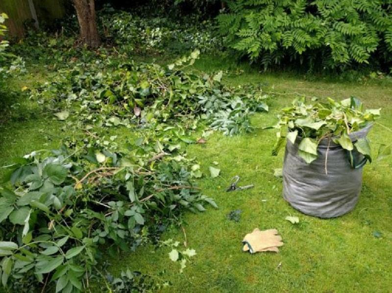 Que faire de ses déchets verts